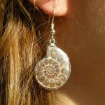 Boucles d'oreilles en ammonite