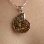Pendentif en ammonite